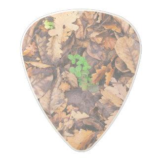 Hojas secas del otoño y tréboles verdes púa de guitarra de policarbonato