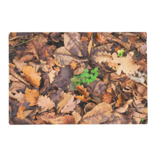 Hojas secas del otoño y tréboles verdes tapete individual