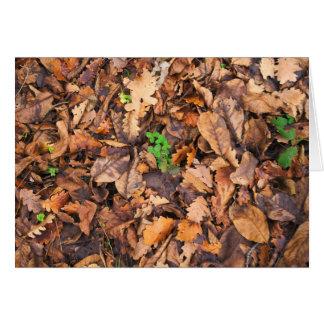 Hojas secas del otoño y tréboles verdes tarjeta de felicitación