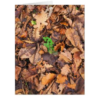 Hojas secas del otoño y tréboles verdes tarjeta de felicitación grande