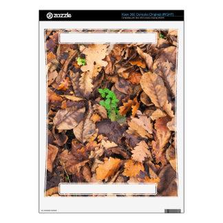Hojas secas del otoño y tréboles verdes xbox 360 skins