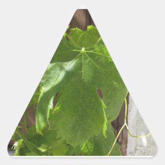 Hojas Triangle Sticker