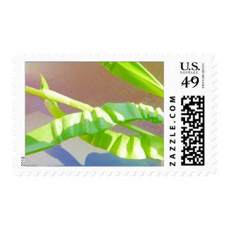 Hojas verdes claras sellos