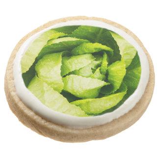 Hojas verdes de la lechuga con las gotas de agua