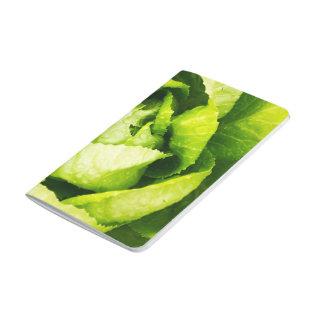 Hojas verdes de la lechuga con las gotas de agua cuaderno