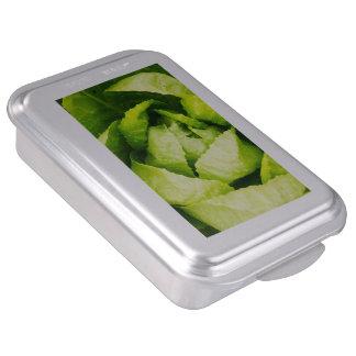 Hojas verdes de la lechuga con las gotas de agua molde para pasteles
