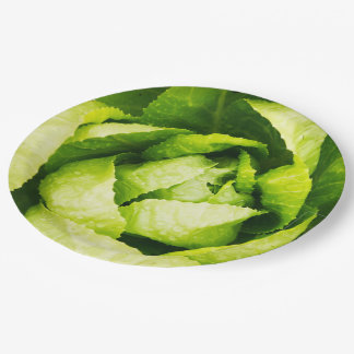 Hojas verdes de la lechuga con las gotas de agua plato de papel de 9 pulgadas