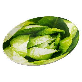 Hojas verdes de la lechuga con las gotas de agua platos de cerámica