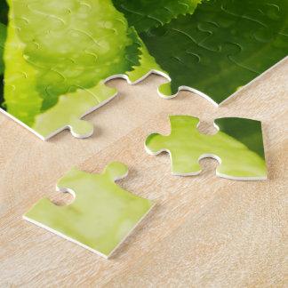 Hojas verdes de la lechuga con las gotas de agua puzzle