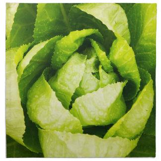 Hojas verdes de la lechuga con las gotas de agua servilletas de papel