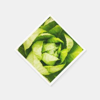 Hojas verdes de la lechuga con las gotas de agua servilletas desechables