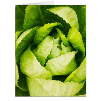 Hojas verdes de la lechuga con las gotas de agua tarjeta de felicitación grande