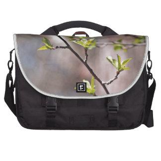 Hojas verdes de la primavera en Brown gris Bolsas De Portátil