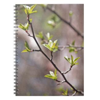 Hojas verdes de la primavera en Brown gris Libreta