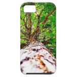 Hojas verdes del caleidoscopio iPhone 5 cárcasa