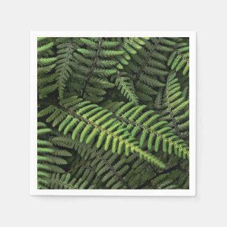 Hojas verdes del helecho servilletas desechables