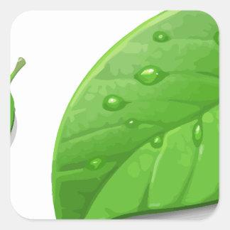 Hojas verdes pegatina cuadrada