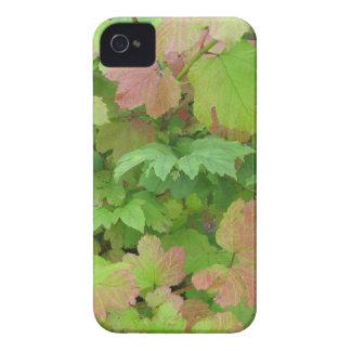 hojas verdes y rosas claras del caso del iPhone 4 iPhone 4 Protectores