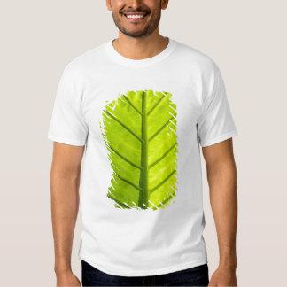 Hojas veteadas verde del follaje tropical adentro remeras