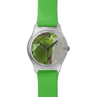Hojas Wrist Watches