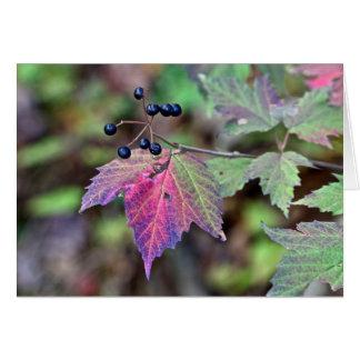 Hojas y bayas de otoño del Viburnum de Mapleleaf Tarjeta De Felicitación