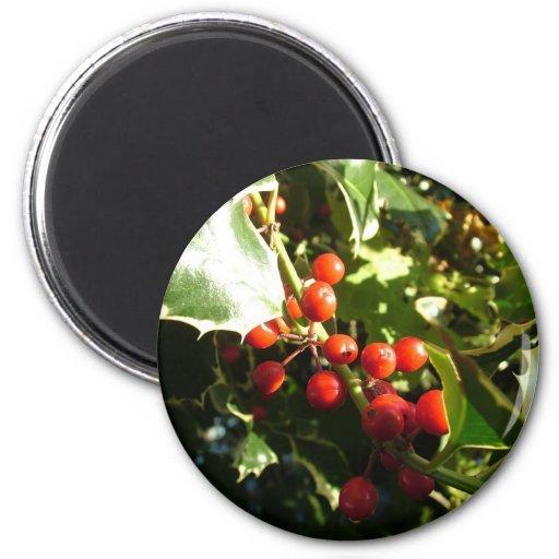 Hojas y bayas rojas, navidad del acebo imán redondo 5 cm