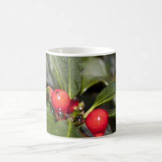 Hojas y bayas rojas, navidad del acebo taza básica blanca