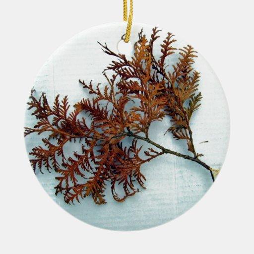 Hojas y rama del helecho del otoño ornamentos de navidad