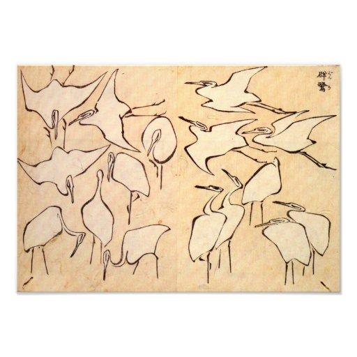 Hokusai Cranes Print Photo