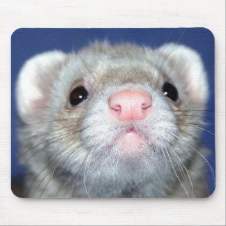 ¡Hola! Alfombrilla De Ratones