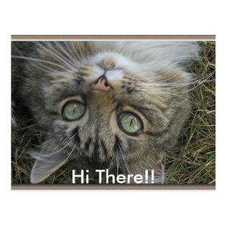¡Hola allí! Postales