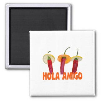 Hola Amigo 2 Inch Square Magnet