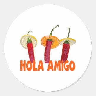 Hola Amigo funny Classic Round Sticker