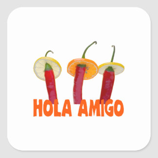 Hola Amigo Square Sticker