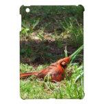 Hola cardenal iPad mini protector
