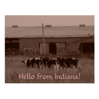 ¡Hola de Indiana! Postal