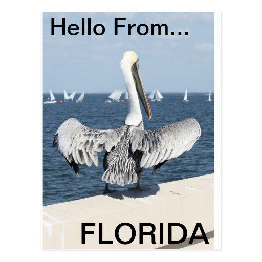 Hola de la Florida Postal