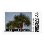 hola de sello de la palmera de la Florida