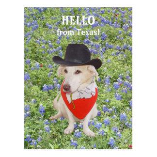 ¡Hola de Tejas! Postal