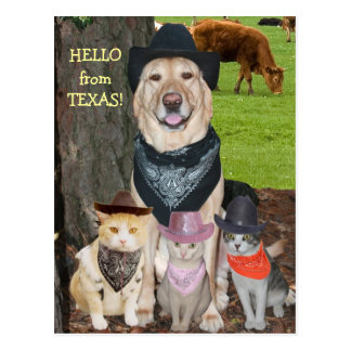 ¡Hola de Tejas! Tarjetas Postales