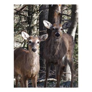 Hola Deery Membretes Personalizados