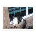 ¡Hola del travesaño de la ventana! Postales