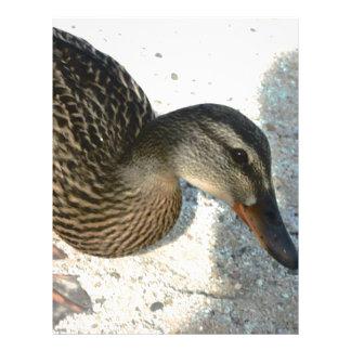 Hola Ducky Membrete A Diseño