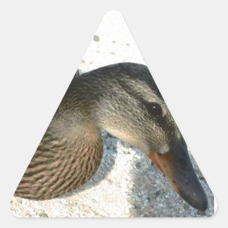 Hola Ducky Pegatina Triangular