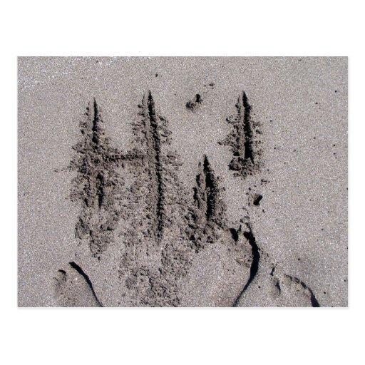 ¡Hola! Escrito en arena de la playa de la Florida Postal