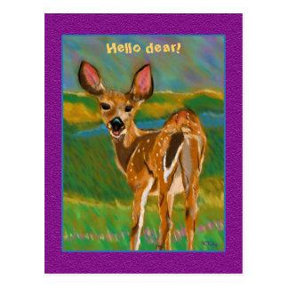 Hola estimada postal de los ciervos