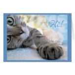Hola hola, humor lindo del animal del gato del pis tarjeton