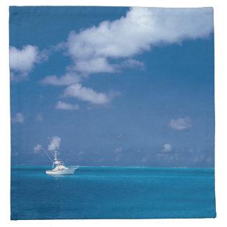 Hola mar del Caribe azul del horizonte del barco Servilletas