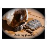 Hola mi tarjeta del amigo