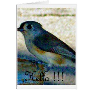 Hola pájaro tarjetón